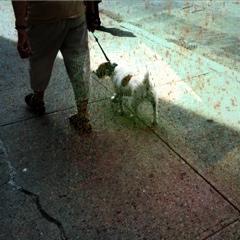 20110607-010302.jpg